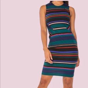 Dorothy Perkins Multi Coloured Striped Pencil 4